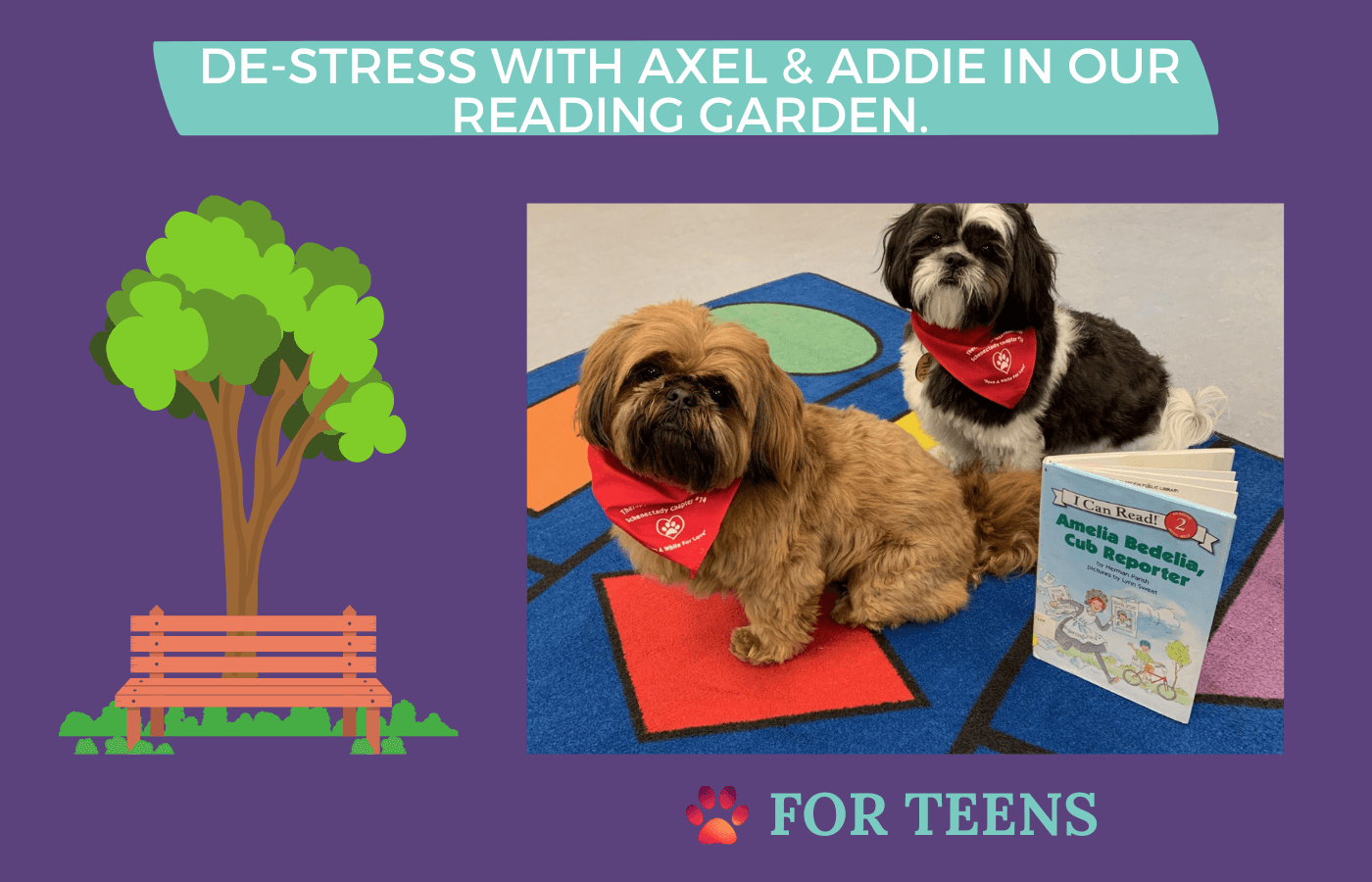 teens de-stress with therapy dogs in our reading garden