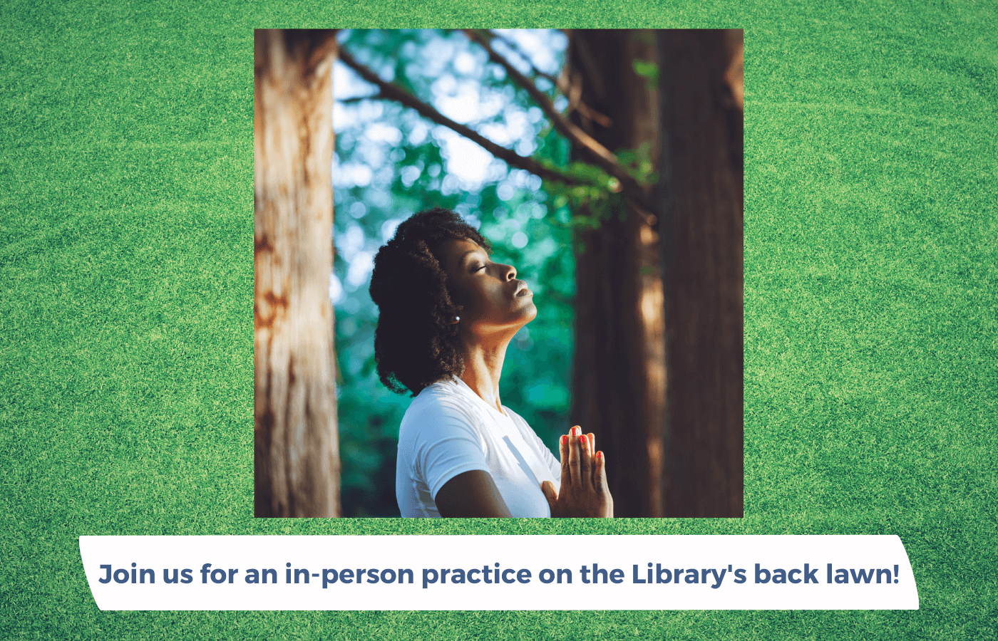 Guided Walking Meditation on library back lawn